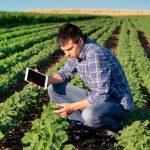 Orbia, plataforma que conecta al agro colombiano con el mercado digital