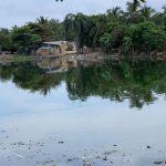 Alcaldía de Barranquilla alista recuperación del caño de La Auyama
